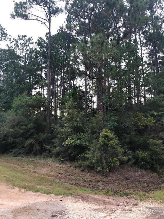 TBD PEPPER TREE LN, Village Mills, TX 77663