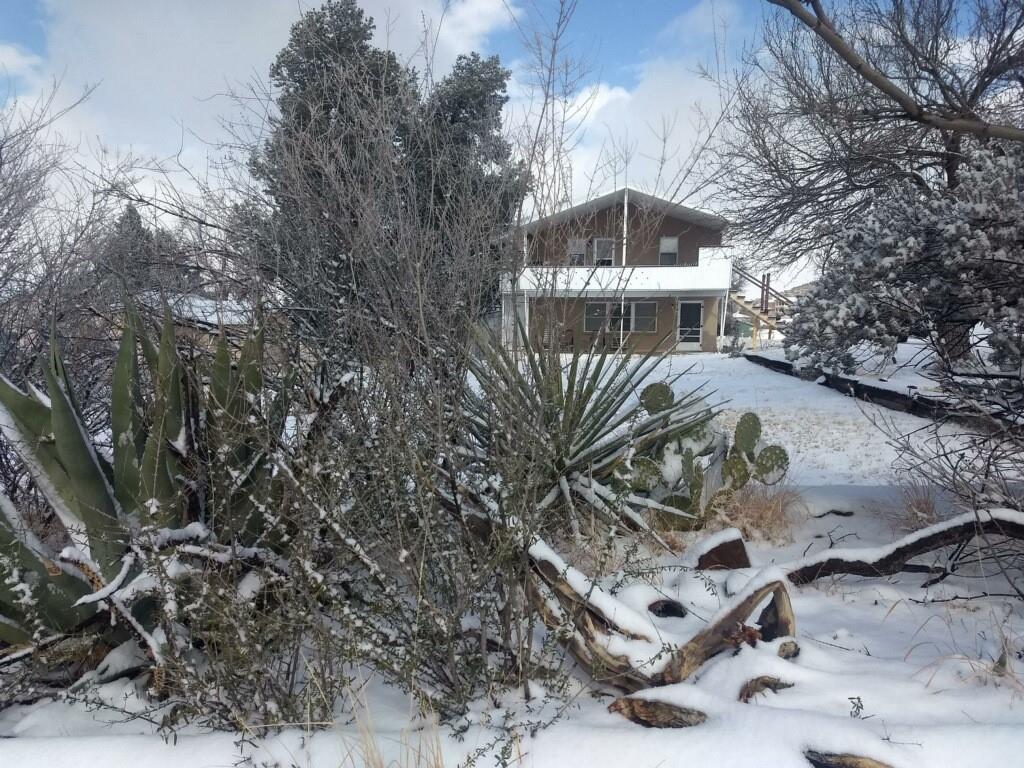 601 N Bird Street, Alpine, TX 79830