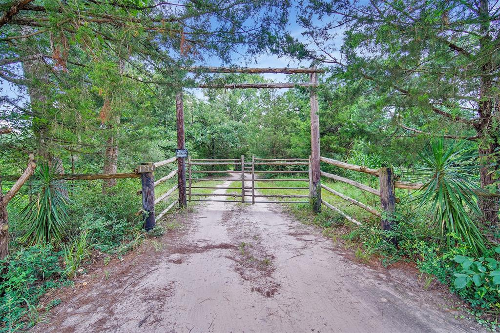 1274 Misty Hollow Lane, Bedias, TX 77831