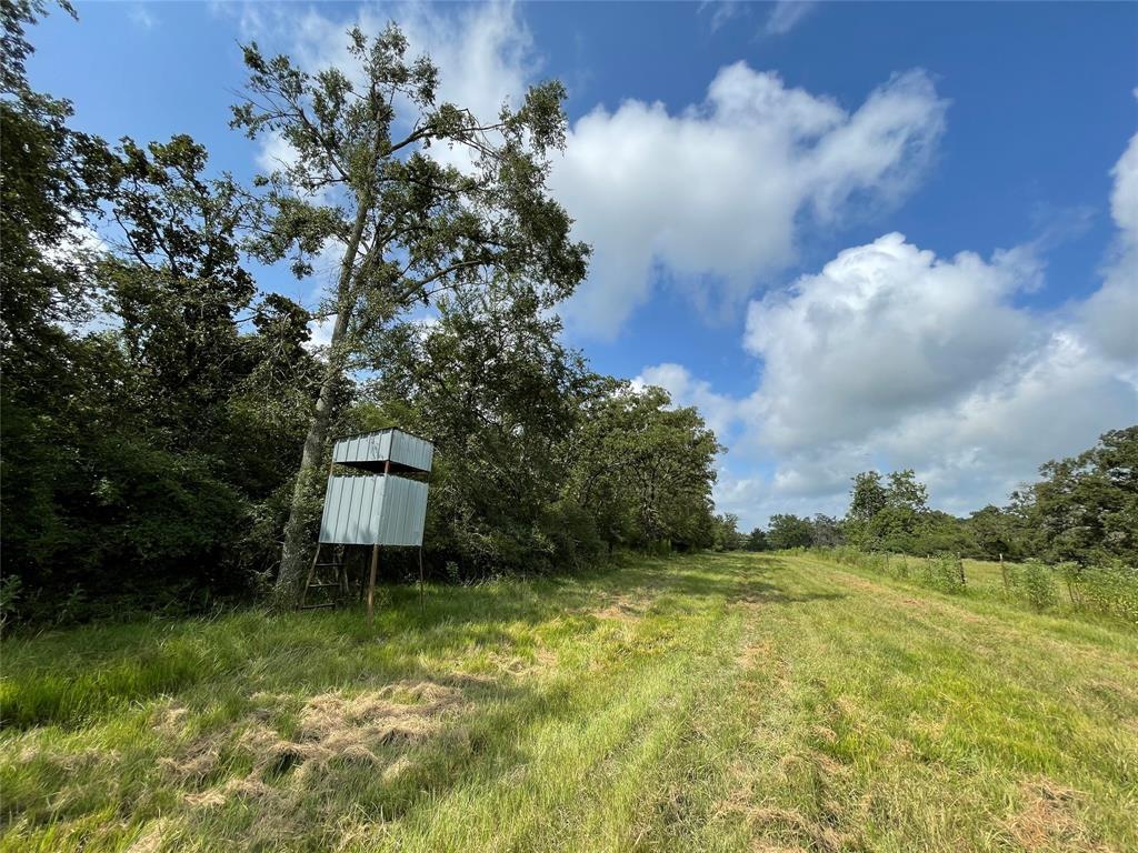 TBD TR 1 County Road 321, Jewett, TX 75846
