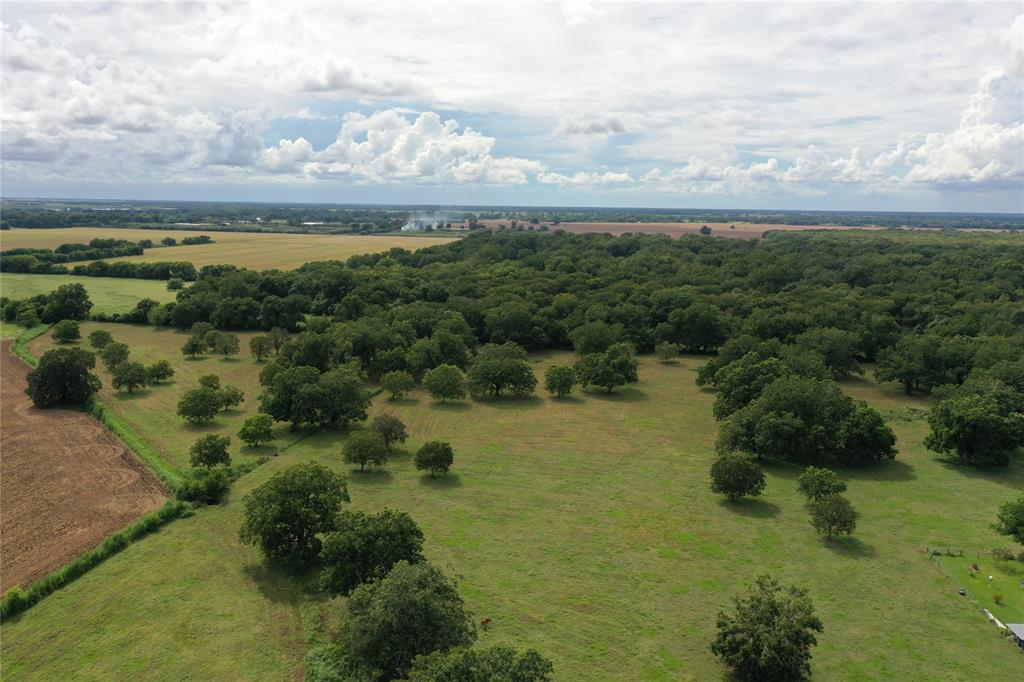 Don't miss out on this historical piece of property!  The huge, century old pecan trees will take your breath away!  Excellent soils.  Fenced and ideal for cattle grazing!  Some outbuildings and a water well.