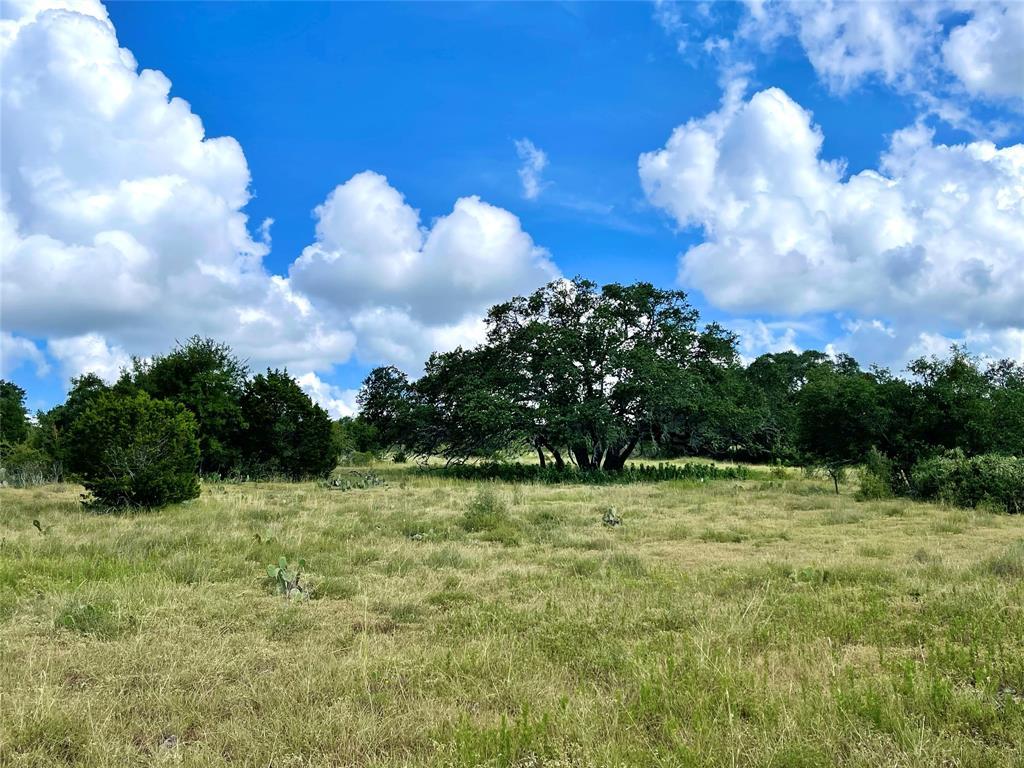 3035 Bridlewood Ranches Drive, San Marcos, TX 78666