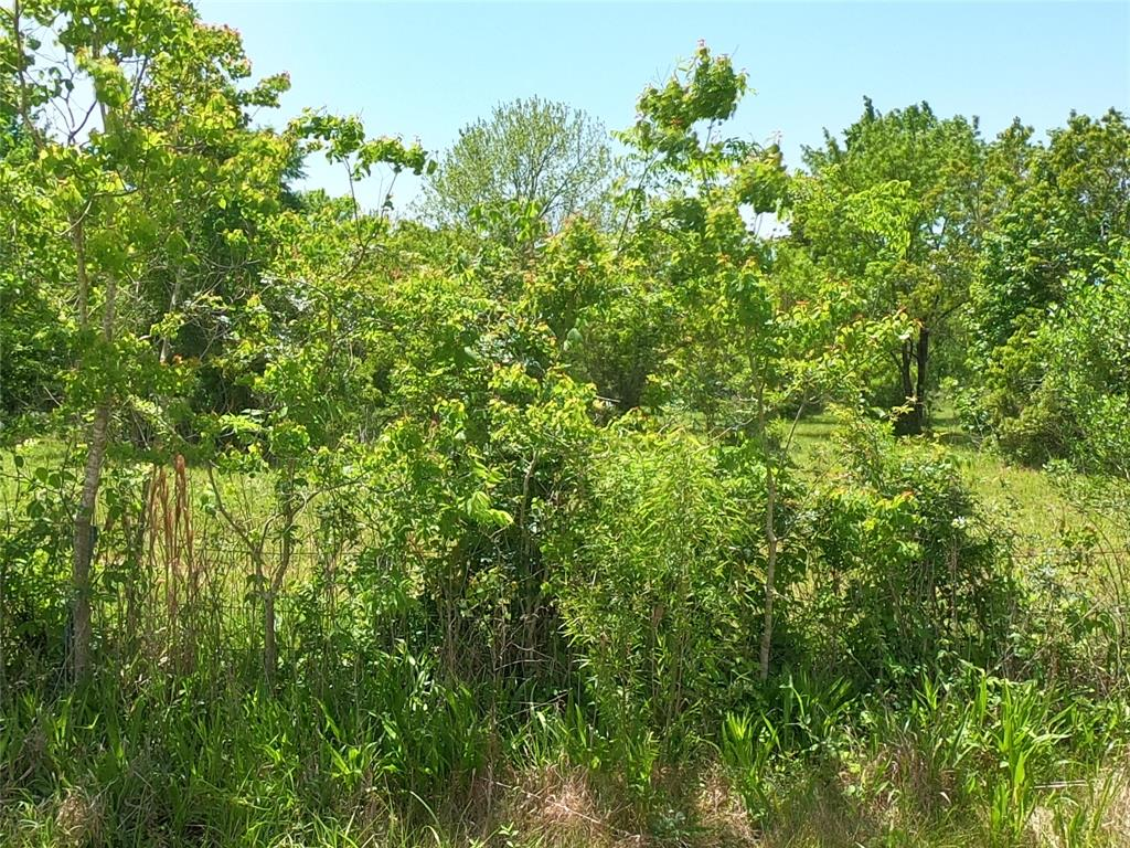 Unimproved cul-de-sac land. Possible Well at back of property (condition unknown).