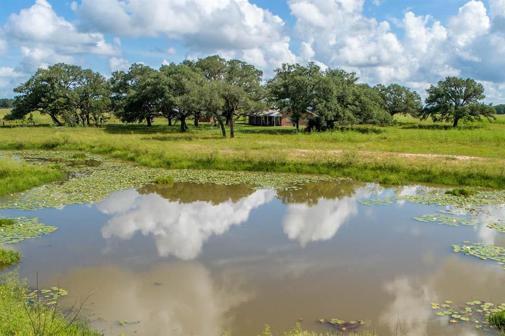 If you are looking for a secluded country home with easy access to the highway where you can fish, hunt, raise cattle and your family, this is it! The ag-exempt 37.88 acres are just off US Hwy 77 north of Fordtran, halfway between Victoria and Hallettsville. An additional 34 acres with pond are available at the back of the property, for a potential total of 72 gorgeous acres. The level 37.88 acres are 70% wooded with exceptional live oaks, immense post oaks, and scattered yaupon. The open pasture is mostly coastal Bermuda and other native grasses, perfect for cattle. More giant oak trees and lush grass surround the homesite overlooking a half-acre pond is in the front pasture. This homestead has two access easements, one to the cattle guard entrance and house, and the other to the back of the property. There is partial perimeter fencing. The house was built in 1985 and is a 1,700 sq. ft. with 2 beds and 1.5 baths.