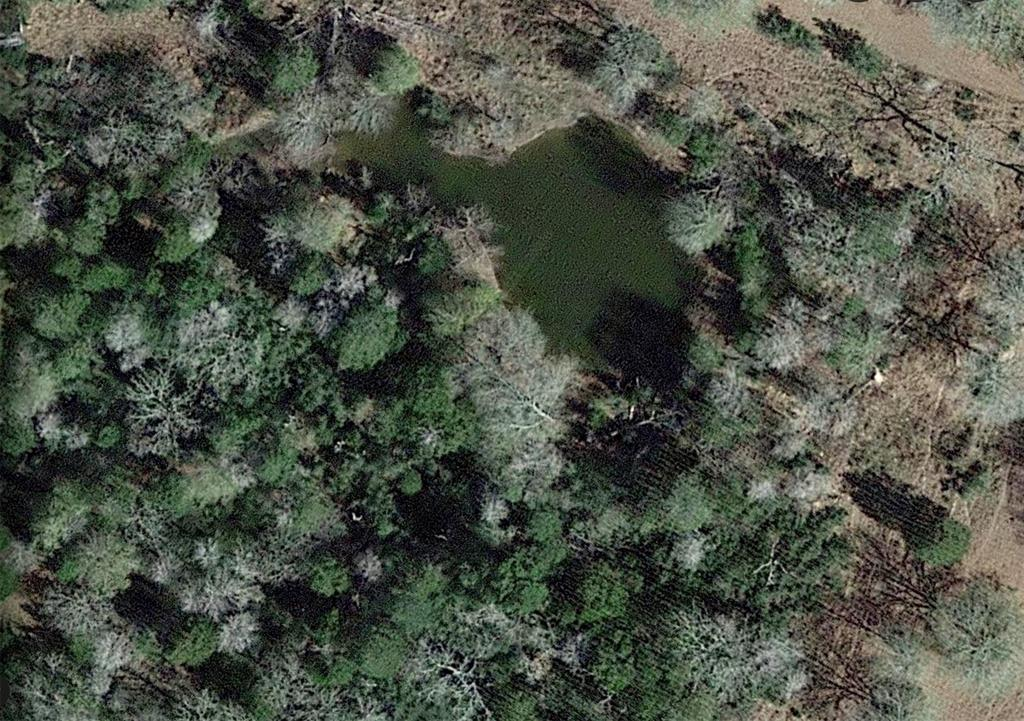 Looking for Texas paradise with an AG exemption? 96.8 acres providing a quiet oasis for a beautiful home, weekend retreat, ranch with hunting and fishing. Hard-to-find acreage that includes a pond and three creeks running through, rolling pastures with oak and elm trees. Great location for commutes to Houston, Austin, College Station and San Antonio. Fully-fenced and surrounded by other large tracts for full privacy with deeded access. Taxes are only $50 with the exemption! Mineral rights are negotiable. Low price per acre for the area! Hurry before it's gone!