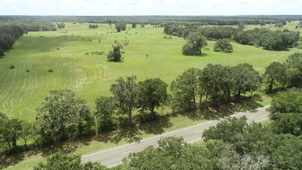 46.41 Acres located outside of Centerville. Mostly pasture with scattered trees and small wooded area with nice oak trees. Many nice homesites to build!! The property has paved FM road frontage and located in a nice quiet area in the country. Electric on-site. Nice square shape layout with a nice view. Existing perimeter fence and ready to use. The property currently has an agriculture exemption with property taxes less than $50 per year. Great property for livestock or hay production. The grass is thick here. Deer, hogs, and other wildlife are plentiful in this area. The pasture was just recently mowed and cleaned up for you. A new survey has already been completed. Good level ground to build your improvements. This nice property will make someone a beautiful place to call home or weekend retreat.