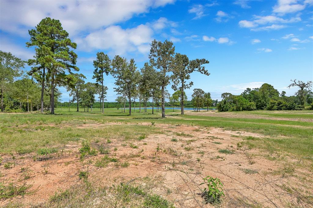 Beautiful Acreage lots in highly desirable area in Montgomery School District. Property includes rights in common to a 18 acre lake. Lot sizes range from 12.3 acres, 13.332 acres, 14.853 acres and 16.832 acres. Seller will have written covenants to keep property owners happy with their neighbors and surroundings. Bring your horses, build your barn and enjoy the pretty countryside. Property already has Electric in place and Keenan Water supply is just next door. Property will need an aerobic septic system installed. Second guest home will be allowed.  See MLS 35076851, 42530079, 12260780 for additional tracts.