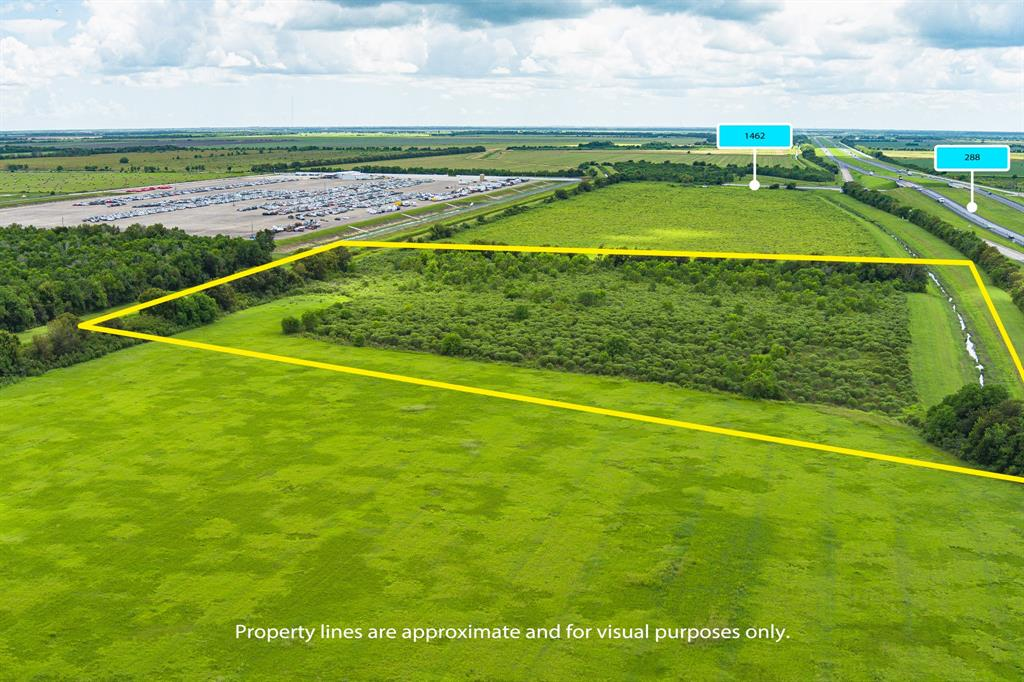 10 acres on the Northbound side of fast growing Hwy 288 corridor just north of FM 1462. Prime location. Must make an appointment to go on property. Property has no road access at this time. Located near Palm Crest. Buyer is responsible for performing their own due diligence in researching the property for sale. All buyers should verify all information, contained herein or not, including access and utility accessibility and costs, and perform physical visits to the property in order to satisfy themselves as to its accuracy. All information is deemed reliable but not guaranteed.
