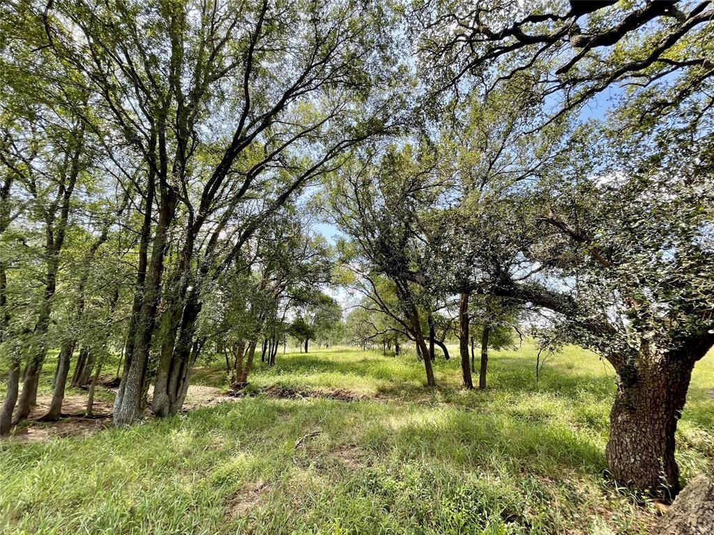 167 Cannon Creek Drive, Gonzales, TX 78629