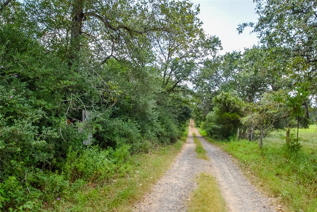 A diamond in the rough is waiting for you! This heavily wooded and secluded 11.33 acres sits on a private road at the end of a gravel county road. It has access on two sides- access it from the PR or take the private road all the way to the cul de sac. Unrestricted and has a shared water well for 15 tracts. Once you clear the underbrush out, you can pick the best spot for your home and install a septic.  No flood plain and has a seasonal creek through the middle of the property. No ag valuation or fences.
