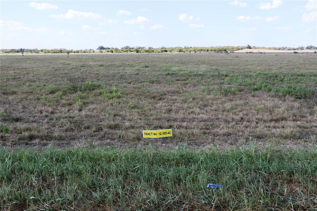 000 E Travis TRACT 4N Road, Holland, TX 76534