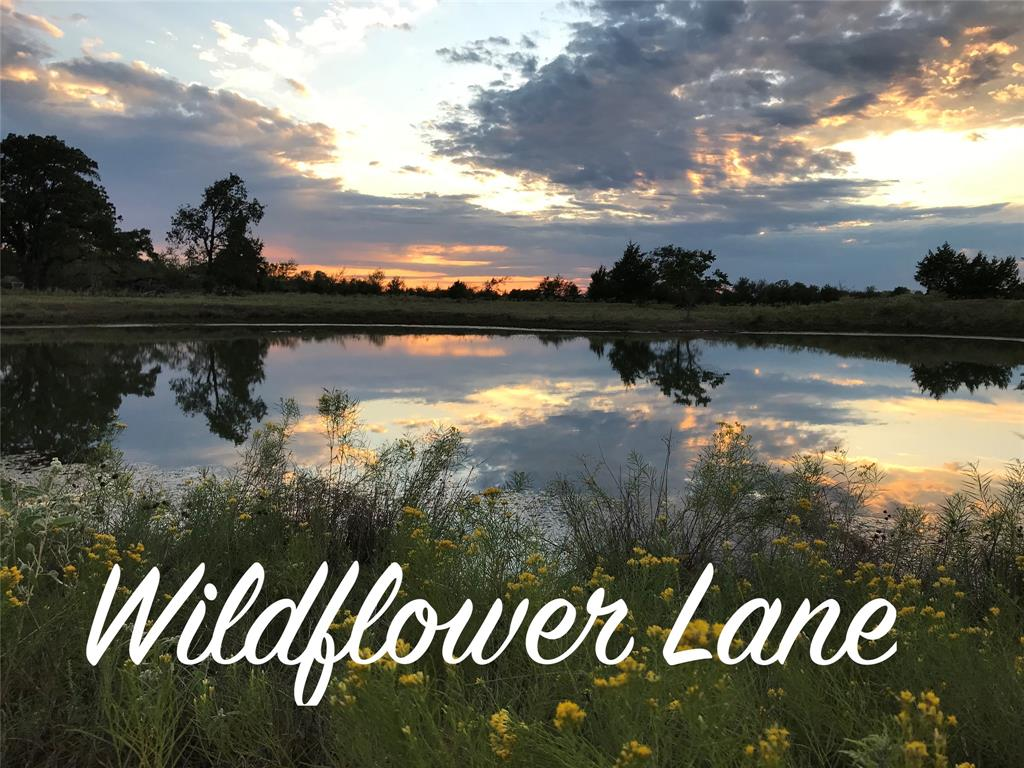 This improved, tranquil, and peaceful ~60 acre Ag exempt property outside of Bryan College Station has it all! With a gated entrance from CR 170 and a deeded easement from the back East corner to FM 244, this is a rare find with open meadows, wooded areas, and long views. The owners have spared no expense or attention to detail when adding all new cleared perimeter and cross fencing, irrigated fruit orchard and vineyard, and a 3-year-old 80'X44' barn with 20' overhangs on each side.  One of the barn overhangs is perfect for DRY hay storage, the other overhang for an RV with full hookups including 50/30 amp service.  Relax on the wrap around porch of the fully-furnished, recently updated, 3/2 home with detached garage. 25 minutes to College Station, 1 hour to the Woodlands, and 1 hr. 15 minutes to George Bush International Airport. Please see attached full list of details and renovations concerning this property.
