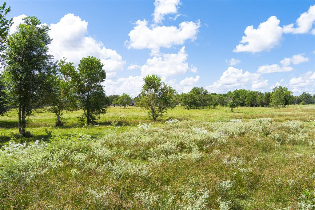 This is the gorgeous 9.68 acre country home site you have been searching for in the heart of Iowa Colony near Meridiana. Build your dream home minutes from 288, Hwy 6 shopping dining and more. Low tax rate and no HOA.  Zoned to Alvin Schools. Located in an area featuring beautiful luxury acreage homes. Trees and green pastures. Bring your horses and cattle. Serene country living with all the perks of being close enough to the city and the Texas Medical Center 30 minutes to Downtown.
