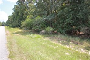 3 Deer Lodge, Magnolia, TX 77354