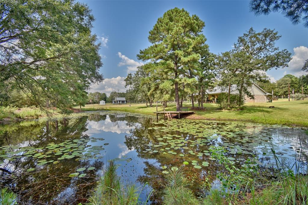 Popular amongst current buyers seems to be land in the country, preferably with mature trees, a pond, nice grasses, and just enough acreage so your neighbor can't see you; yet, easy enough to take care of on your own. If that is the case, this property in popular New Ulm, TX won't last long! On these 3.652 acres sits a well-maintained 3/2 brick/Hardie siding with metal roof main house and an additional 2/1 guest cabin. The pond is stocked, the outdoor entertaining gazebo is prepped, and the relaxing back porch looking out towards the pond, woods, and daily deer feedings, has a chair with your name on it.....like I said, it won't last long!  THE INFORMATION CONTAINED HEREIN HAS BEEN GATHERED FROM SOURCES DEEMED RELIABLE; REPRESENTATIVES CANNOT GUARANTEE THE ACCURACY OF SUCH INFORMATION. PROSPECTIVE BUYERS SHOULD VERIFY ALL INFORMATION TO THEIR SATISFACTION.