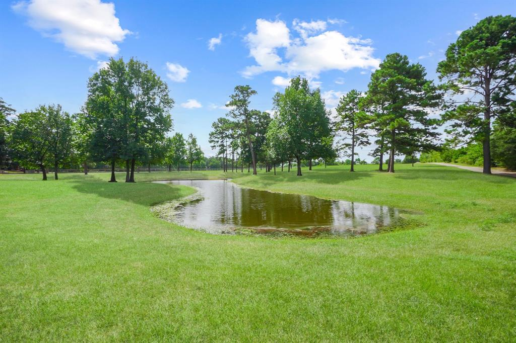 """This picturesque unrestricted 16+ acre property is located just 1/2 mile from Lake Conroe. This property is ideal for the investor, developer, or luxury horse/ranch enthusiast. This scenic beauty is groomed, manicured, fenced/cross fenced, with an alluring rolling topography, a pond, and trees — Two horse barns with large-high-quality stalls and unfinished living space above ready for the buyer's custom touches. Barn 1 downstairs is approximately 3,200 sqft with 12 luxury stalls, and upstairs is approximately 1,568 sqft with 3-bdrm, 2-bath, completed plumbing, electrical, and sheetrock. Barn 2 is a large structure that offers 1st-floor horse stalling accompanied by approximately 2,000 sqft storage space that could serve as a shop, gym, entertainment area, or whatever imaginable. The 2nd and 3rd floors total approximately 10,069 sqft of space framed for luxury living. Also available and listed separately, an additional contiguous 4+acres with FM 1097 road frontage and """"as-is"""" home."""