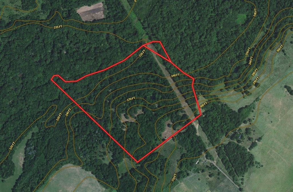 Sportsman's Paradise! 54 + acres rolling to hilly with some bottomland. Mostly wooded in old growth hardwoods with some open. Long frontage on Catfish Creek. Good access by County Road. Deer, ducks, alligators, hogs, frogs and more.