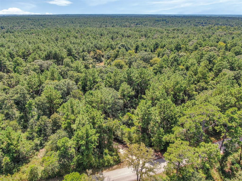 51 acres being sold out of a larger tract.  Beautiful acreage covered in a multitude of trees to build your private oasis in the quiet, country. Just a short distance from HWY 6 offering paved county roads right up to your own drive with electric, water and highspeed internet available. This tract also has a pond ready to be improved with some creativity.  No HOA, light restrictions and timber exempt. Minutes to the 249 Aggie Expressway. Property is heavily wooded and may need to be walked to view. (Tract 02)