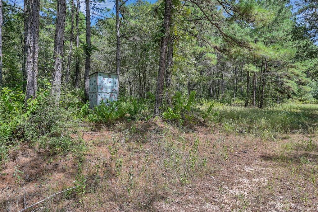 40 acres being sold out of a larger tract.  Beautiful acreage covered in a multitude of trees to build your private oasis in the quiet, country. Just a short distance from HWY 6 offering paved county roads right up to your own drive with electric, water and highspeed internet available. No HOA, light restrictions and timber exempt. Minutes to the 249 Aggie Expressway.   Property is heavily wooded and may need to be walked to view.  (Tract 03)