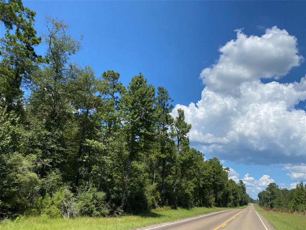 Tract A2-2; First-time open market offering for historically owned industry forestland. Beautiful rolling topography with pines and hardwoods. Near Lake Livingston and public boat ramp. Great shapes for utilization. Lake sites. Great access/frontage allows for many uses. (ie; recreation, hunting, high fence, RV park, leisure ranch, development, etc…) Trinity Rural Water Supply has well and road access. Water and Electric available by extension and confirmation. Access on Thornton 1 Rd., or, Fm 355, or, internal 60' easement road. Properties fronting the easement road are responsible for the maintenance of said road.