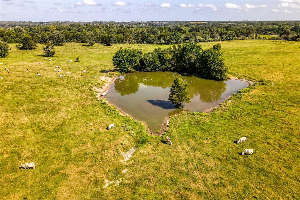 This is a beautiful homestead ranch comprised of 150+ rolling acres, large Oak and Pecan trees. Located in Northeast Washington county on Hwy 105 near the Brazos River crossing, with convenient access to Hwy 6, making your drive to BCS or Houston a breeze. HOME: ~2,300sqft brick home. 3 Bedrooms, 3 Full Bathrooms. Attached 2 car garage. OTHER IMPROVEMENTS: There is a cabin that is currently being used for an office which could be easily converted into a guest or vacation rental cabin. 2 Barns: One wood frame barn would be a great equipment or hay barn. The second barn is a metal barn with stalls built in place that would be perfect for show cattle or horses.  WATER: There is a ¾ acre pond in the front of the ranch. 2 water wells. One well serves the main home and the other water well serves the office and water troughs. This property is under AG Valuation.  Square footages are per Washington County Appraisal District.