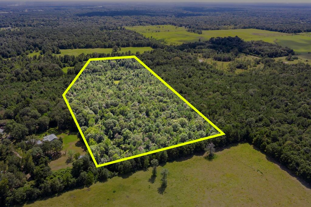 Welcome to the country! This beautiful 10+ acre tract is private and wooded. Lots of room to build your future home here! It is unrestricted, unimproved and ready for the new owner's individual and personal touch. There is wildlife on the property and room to hunt. Various trees include: White Oaks, Red Oaks, Pine, Magnolia, Sweet Gum, Mulberry, and more! Access by easement. All interested buyers must be accompanied by agent for viewing.