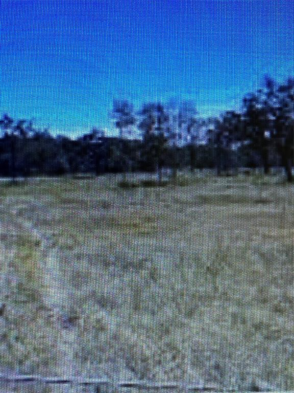 Beautiful secluded 34 Acre Lot in Madisonville. Ready for so many options. Build dream ranch or estate family compound.  Acres of natural pasture. Perfect Ranch or Second Home Property.