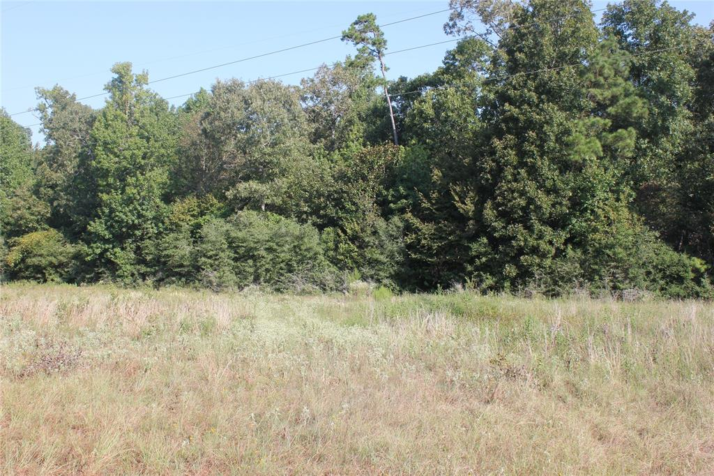 38+/- acres split into 3 different tracts of land along a county asphalt road. It contains both hardwood and pine timber. Clear some acreage to build your dream home or for your livestock. It's minutes away from Lake Livingston and 60 miles north of Houston. Schedule your private showing today!