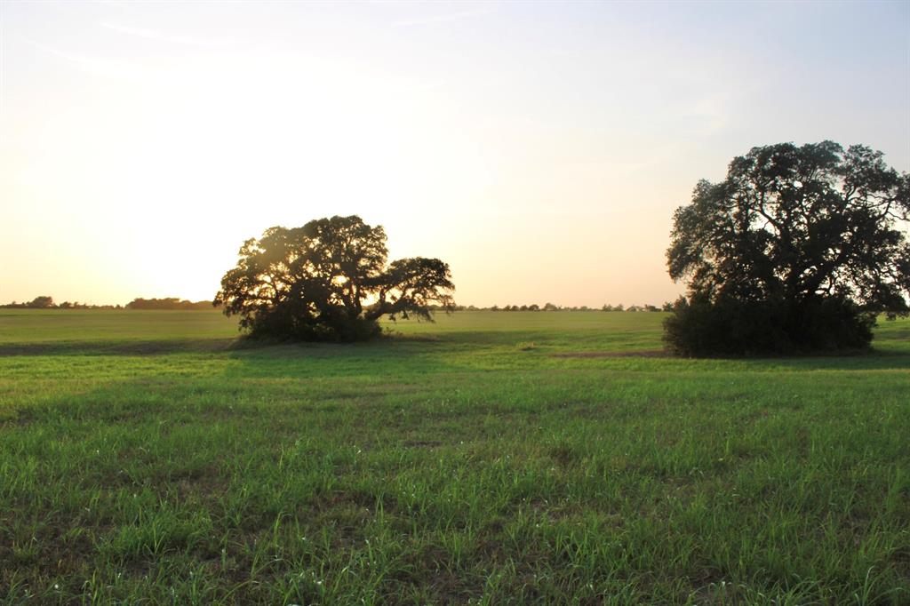 37.0996 acres of slight rolling hills in the highly sought-after, William Penn area of Brenham. This tract has a few large Oak trees in the bottom. It has so many great building sites with long, hilltop views of the amazing sunsets that paint the sky in Washington County. Once leased for a hay production, the improved pastures are not only beautiful to look at, they also provide you with AG exemption for hay cutting. The surrounding properties are large and easy on the eyes, so you have incredible views all around. the property is 15.5 miles from Brenham, making it convenient to grocery stores, shopping and night life. It's 1 hr 20 mins to downtown Houston, making it an easy weekend escape. This is one of two tracts of land, they can be bought together for a total of 72.67 acres or bought separately and are already surveyed out as of July 2021. Make this your next new construction home dream property or your weekend getaway.