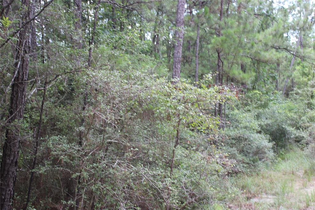 Looking for a place to get away?  Come see this 1.376 acre tract today and own your own piece of land.  This is a pretty wooded tract that is very secluded.