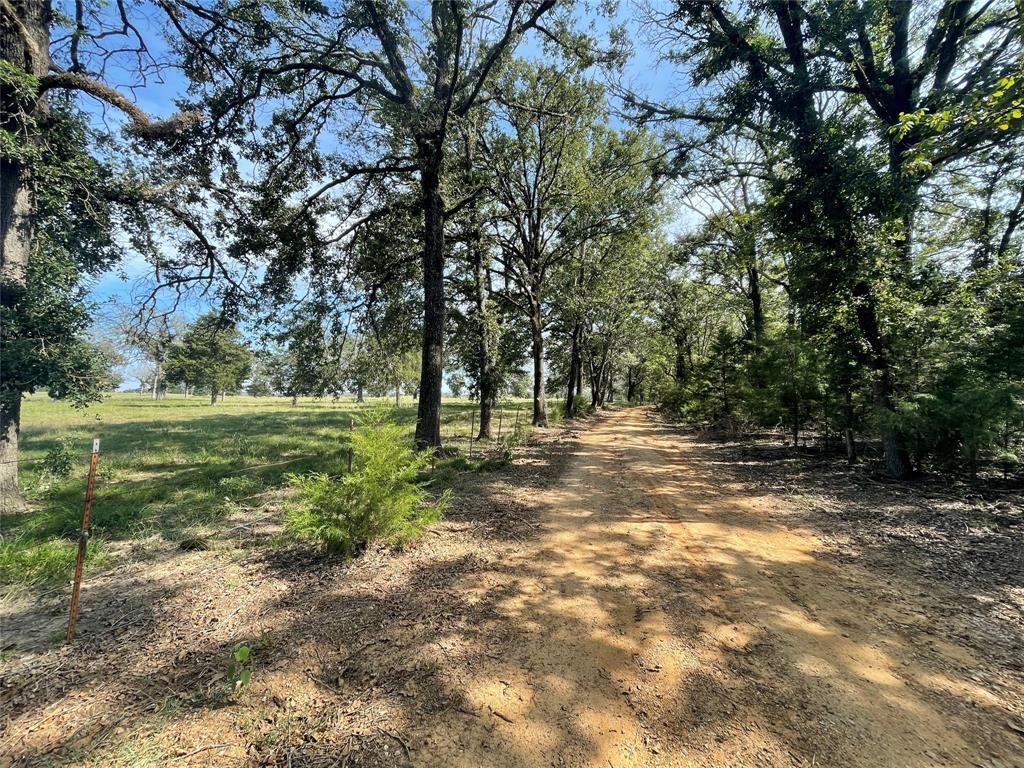 TBD Private Road 305, Oakwood, TX 75855