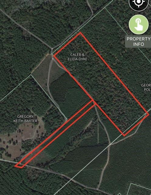 35+ heavily wooded acres surrounded by timberland. This would make a great hunting/recreational property or could be cleared to build your dream home. Rolling terrain and a beautiful mix of hard and soft woods. Call today to schedule your private showing!