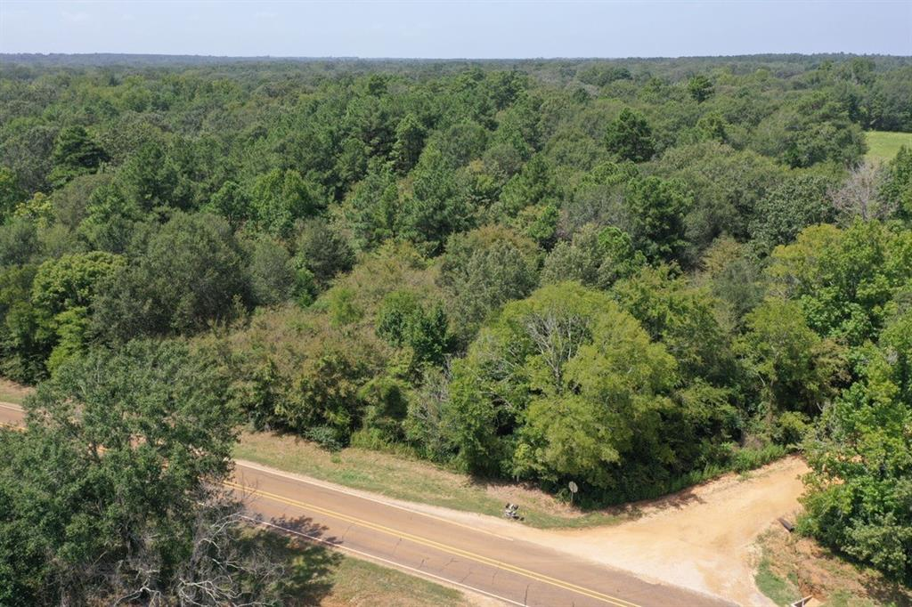 Approximately 4 Acres of vacant land for sale with great road frontage on FM 227 & also road frontage on Houston CR 1870 with no restrictions. The land has a nice mix of pine & oak trees with some open pasture at the back of property. Property has good building site options. Houston County Electric and Consolidated Water at the road. Utility availability to be confirmed by buyer to satisfy needs.