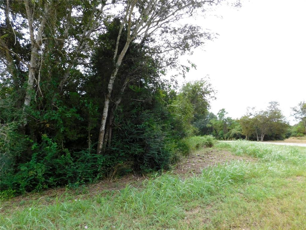 Small property is hard to come by and this one is unrestricted! Build your home, bring in a manufactured home, fence your animals here, run your business here. This property is part of a larger tract of land but can be divided out.
