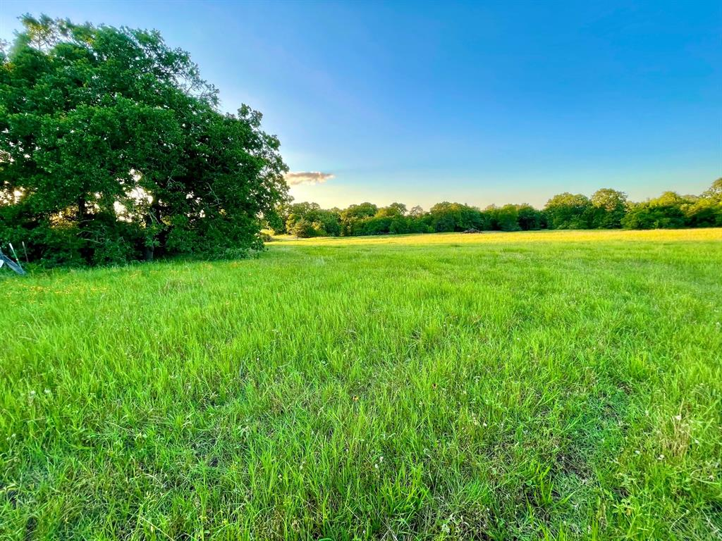 Wait 'until you see this stunning location for your Texas country home or bardominium! Located in the peaceful surroundings of Burleson county, this 4.87 +/- acres of unspoiled countryside comes with a stunning homesite that includes a nice elevation change on a small hill. The mostly open area includes a mix of improved coastal bermuda and native grasses, mature oaks and lovely views. Quality improvements abound with new five-strand barbed wire fencing, a 24-foot recessed four rail entryway and drive that will preside over approximately 496 ft. of frontage on the soon-to-be newest constructed hard-topped county road in Burleson county! The land conveys with light restrictions in place to secure the enjoyment of your Texas Country homestead for years to come. A short drive from Caldwell, Brenham, Lake Somerville, and the action of SEC Country in College Station, the land also resides in a geographic sweet spot making most Houston and Austin locations approx 1-1/2 hours away.