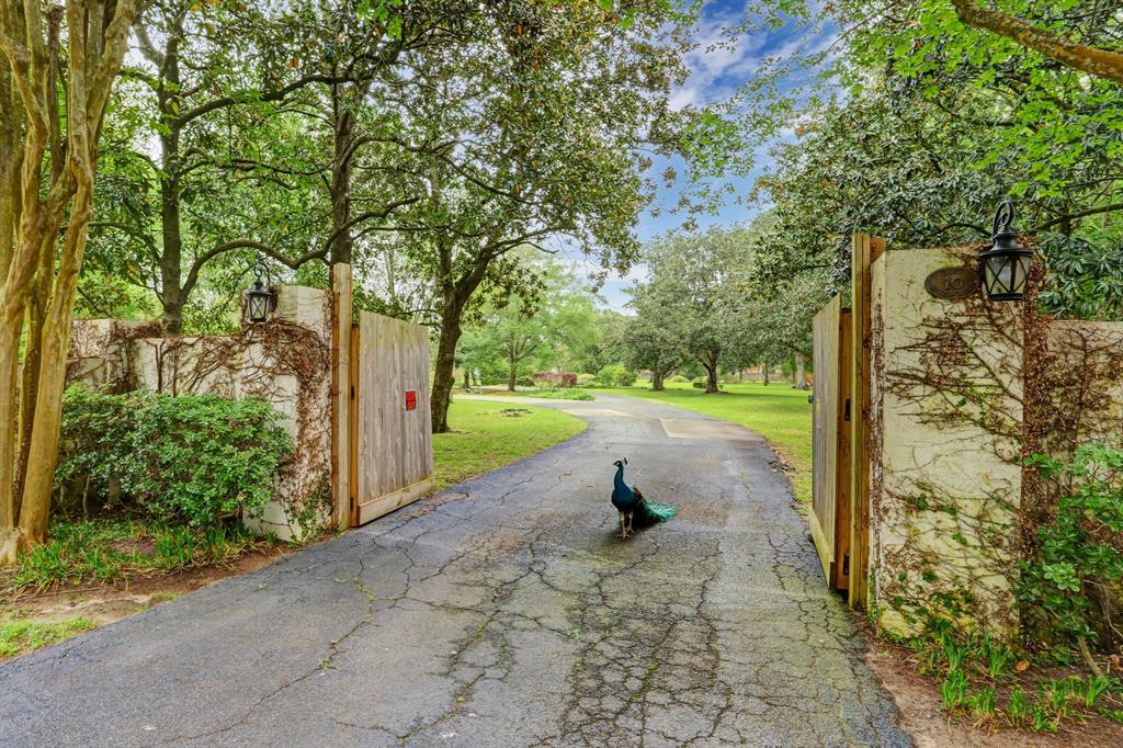 10 E Rivercrest Drive, Houston, TX 77042