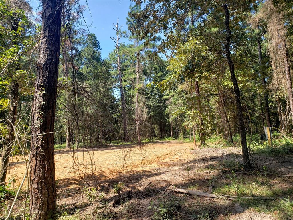 tbd County Road 2620, Chester, TX 75936