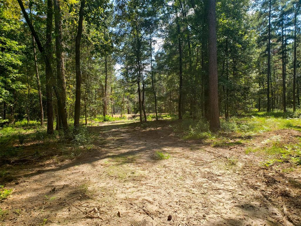 00 County Road 2620, Chester, TX 75936