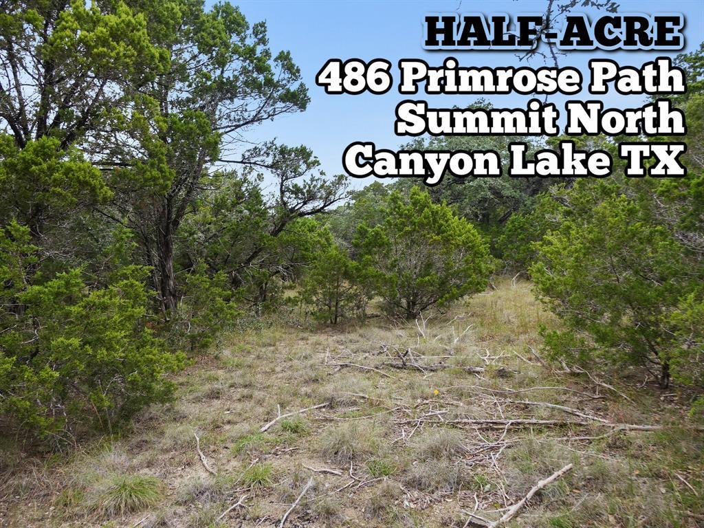 486 Primrose Path, Canyon Lake, TX 78133