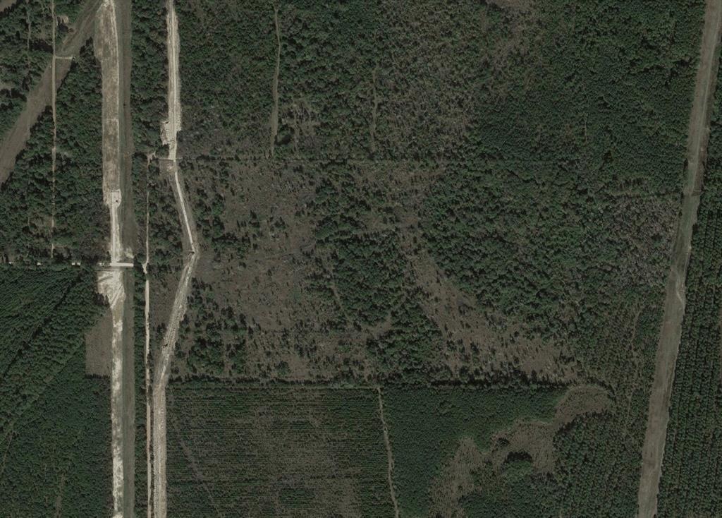 0 Pelican Road Road, Shepherd, TX 77371