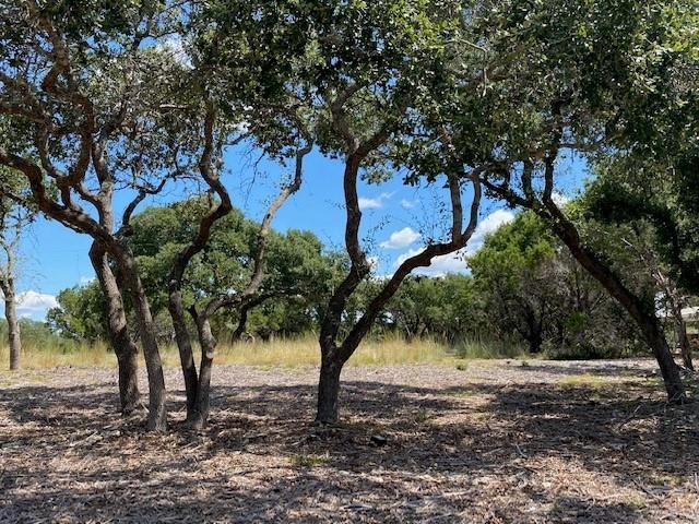 TBD Cottonwood, Fischer, TX 99999