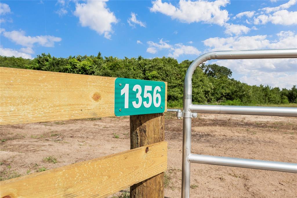 1356 Piney Woods Drive, Alleyton, TX 78935
