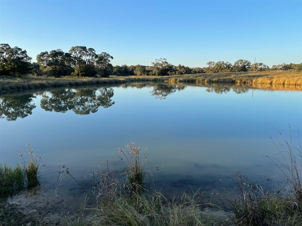 TBD Forest Oaks Drive, Altair, TX 77412