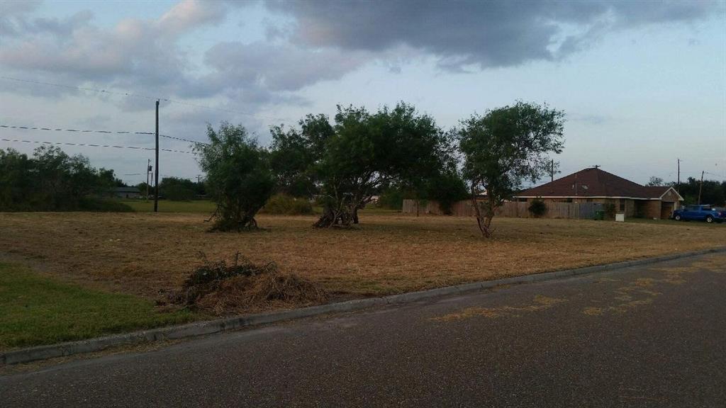 1020 N Rios Circle, Raymondville, TX 78580
