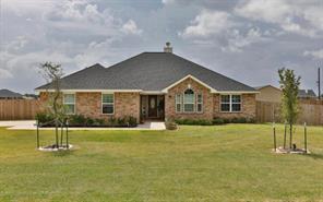11019 Horseshoe Estates Drive, Needville, TX 77461