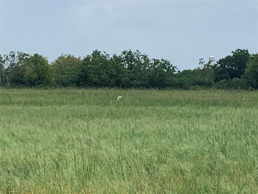 1820 W Bayshore, Anahuac, TX 77514