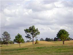 14414 Cypress Links Trail, Cypress, TX, 77429