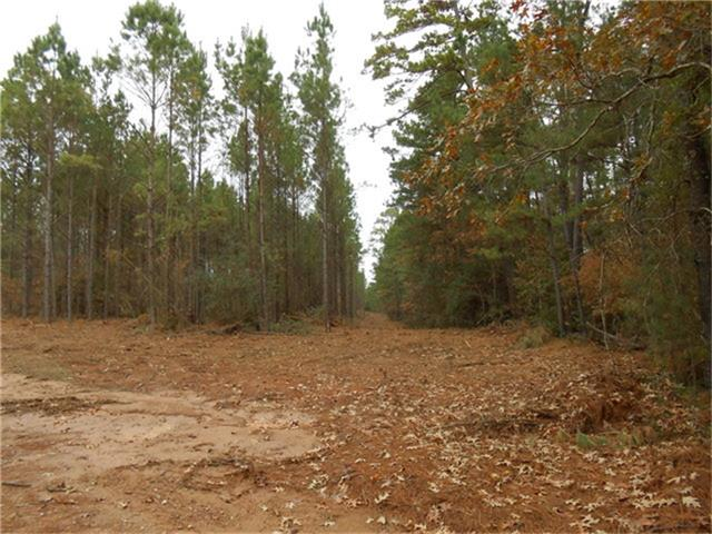 Located just up the Pipeline Road about 5 miles from the Houston County Lake 17 acres backs up against the Spring Creek Country Club. Property has elevation changes giving the appearance of rolling hills with several home sites on the property, with over 800 feet of road frontage. Water and electricity is available. Priced at $ 4500 an acre with an additional 33 acres available across CR 2125. Call today to see this nice property. Call today to see this nice property.