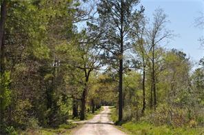 13 Acres Jordy, Huntsville, TX, 77320