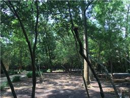 32 Stillforest, Piney Point Village, TX, 77024